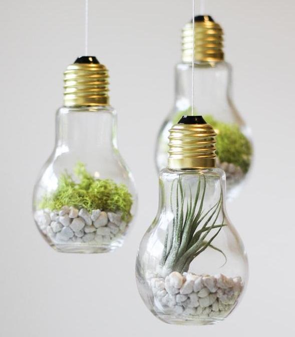 DIY-Lightbulb-Terrariums HOME DECOR